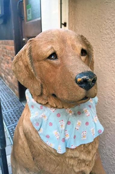 141104わんぱく犬.jpg