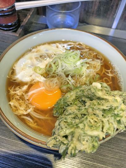 200601文殊浅草春菊天玉1.jpg
