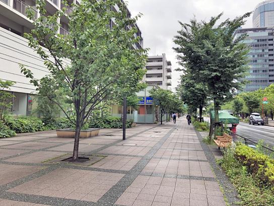 200623太郎豊洲店1.jpg