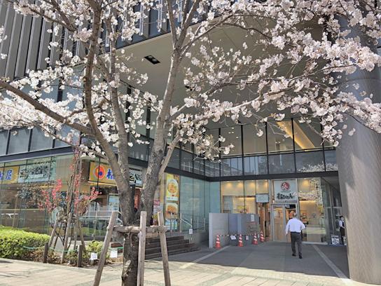 210324松のや豊洲店2.jpg